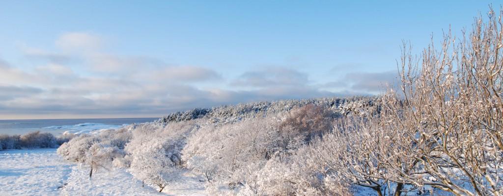Vinterutsikt2